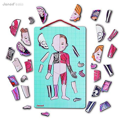 Körperteile spielerisch kennenlernen